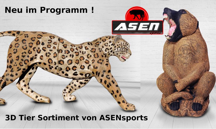 asen sports banner 900